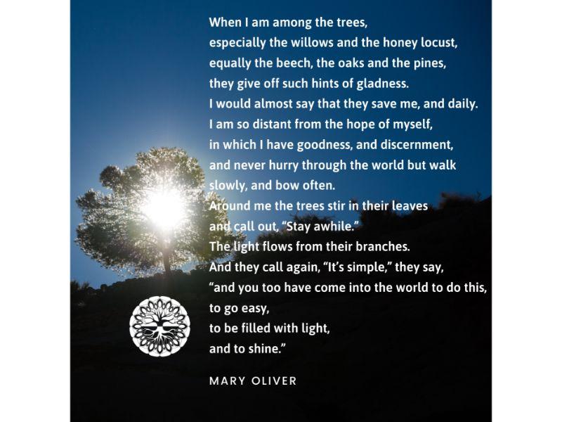Mary Oliver, Trees