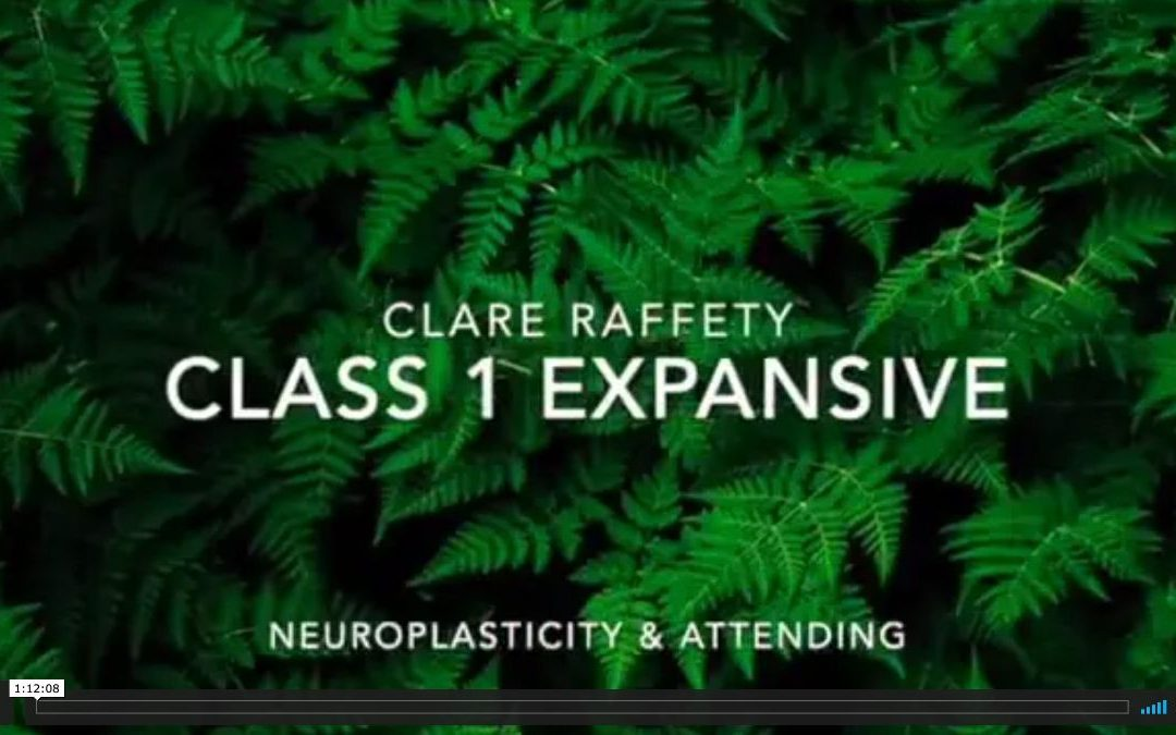 Neuroscience informed practice Expansive session 1: Neuropasticity & attending