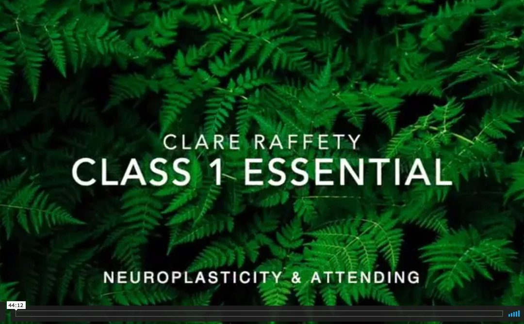 Neuroscience informed practice Essential session 1: Neuropasticity & attending