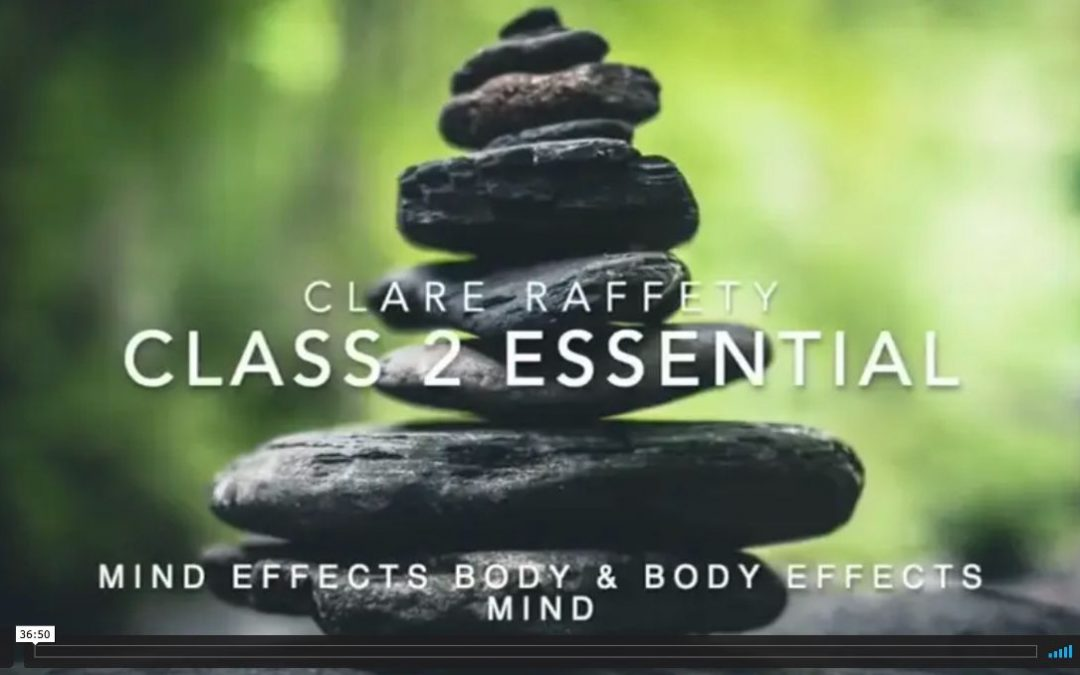 Neuroscience informed practice Essential session 2: Mind effect the Body & Body effects the Mind