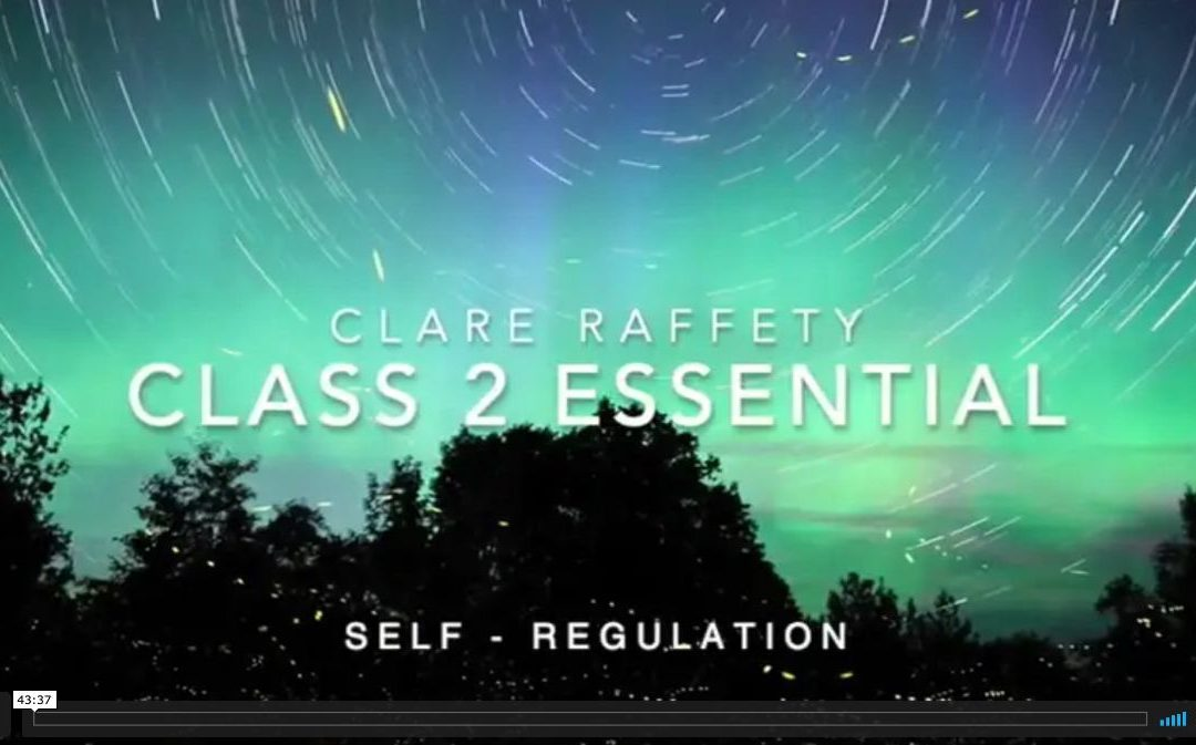 Neuroscience informed practice Essential session 3: Self-Regulation