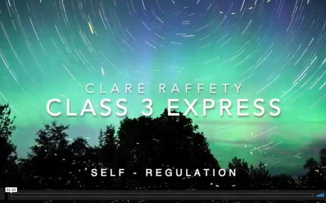Neuroscience informed practice Express session 3: Self-Regulation