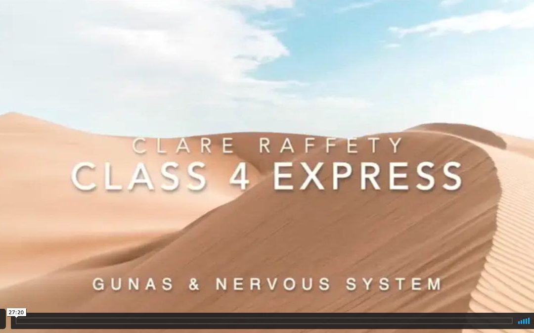 Neuroscience informed practice Express session 4: Gunas & the nervous system