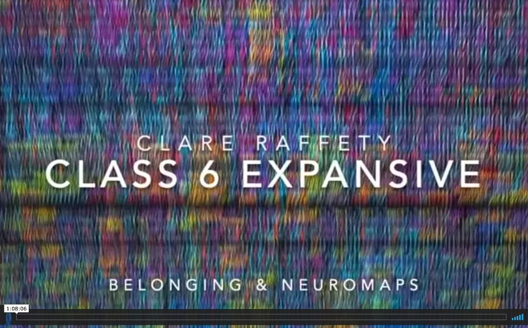 Neuroscience informed practice Expansive session 6: Belonging & Neuromaps
