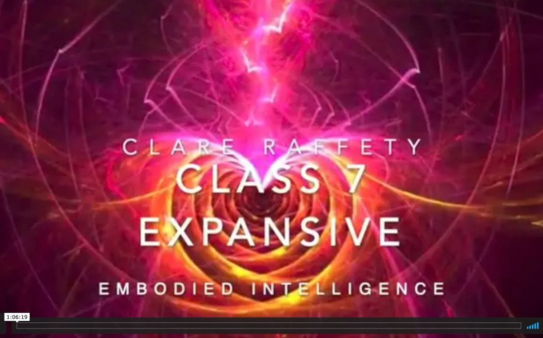 Neuroscience informed practice Expansive session 7: Embodied Intelligence