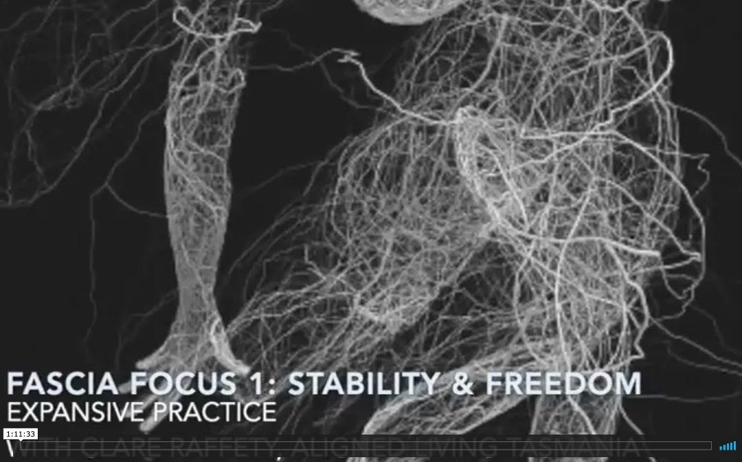 Fascial Wellness Expansive Session 1:  Stability & Freedom