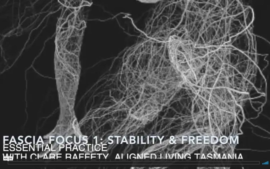 Fascial Wellness Essential Session 1:  Stability & Freedom