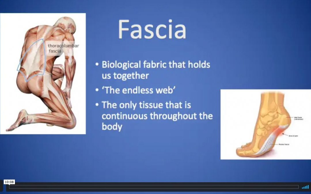 Fascia informational video
