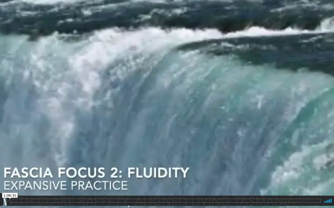 Fascial Wellness Essential Session 2:  Fluidity