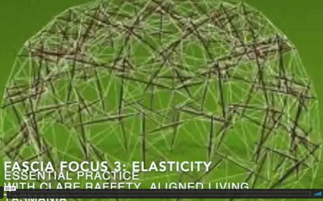 Fascial Wellness Essential Session 3:  Elasticity