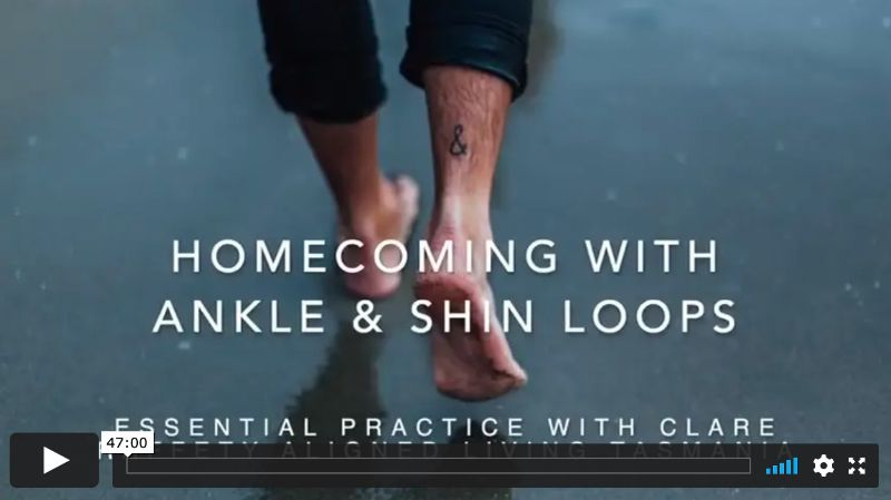 Homecoming with Ankle & Shin Loops, Essential Session 1