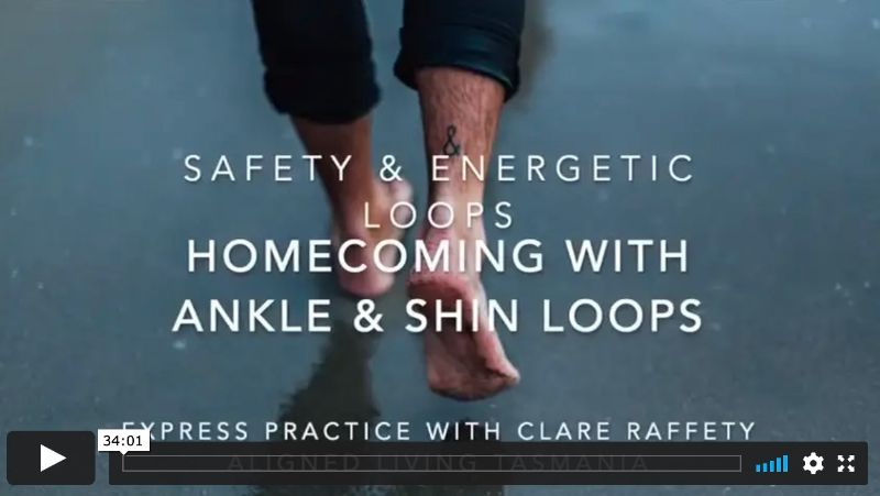 Homecoming with Ankle & Shin Loops, Express Session