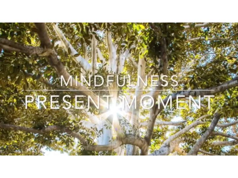 mindfulness: present moment awareness