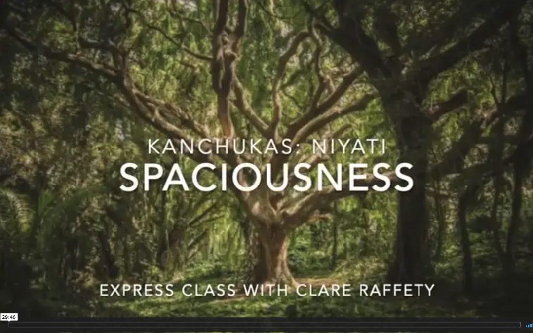 Kanchukas: Spaciousness. Express session