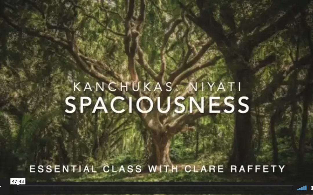 Kanchukas: Spaciousness. Essential session