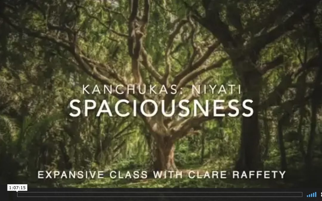 Kanchukas: Spaciousness. Expansive session