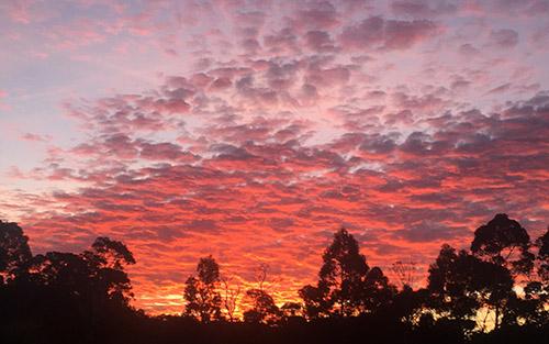 Tasmania-Sunset