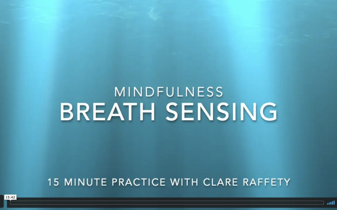 mindfulness: 15 minute breath sensing