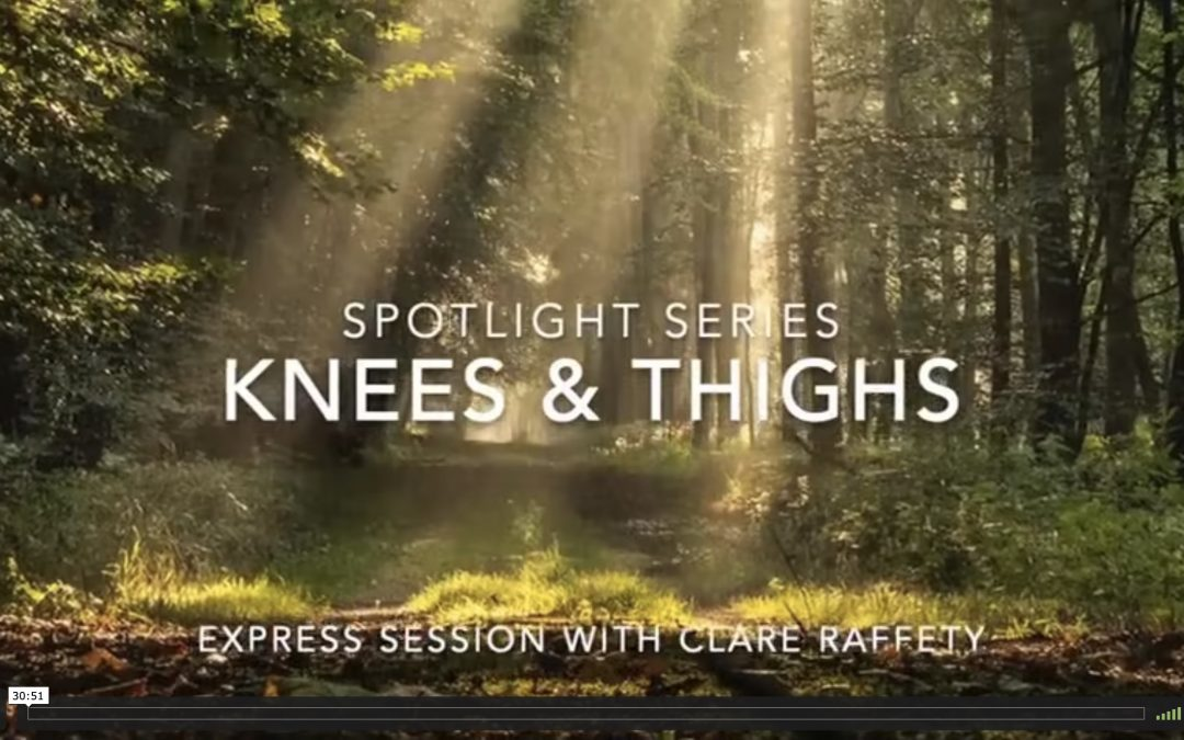 Spotlight Series: knees & thighs. Express session