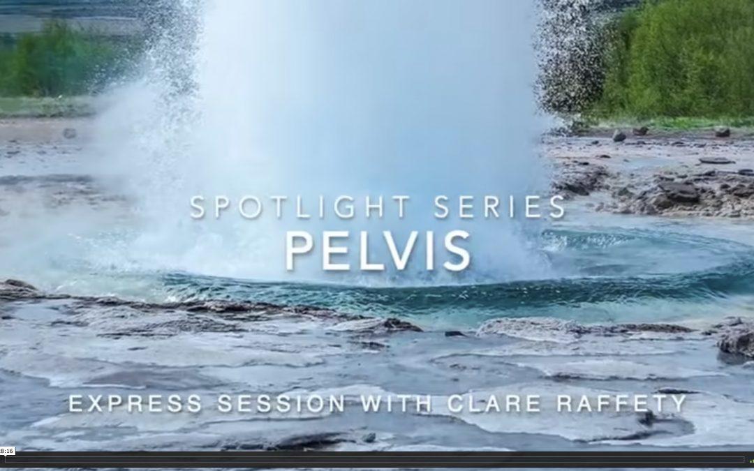 Spotlight Series: pelvis. Express session