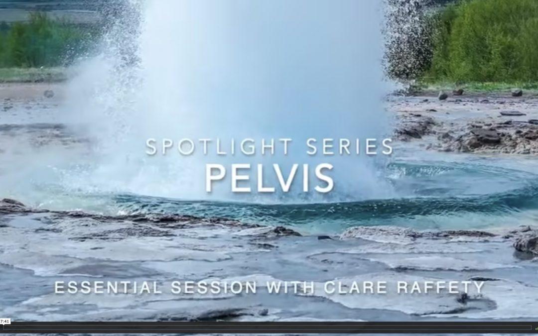 Spotlight Series: pelvis. Essential session