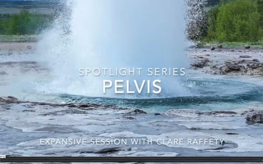 Spotlight Series: pelvis. Expansive session