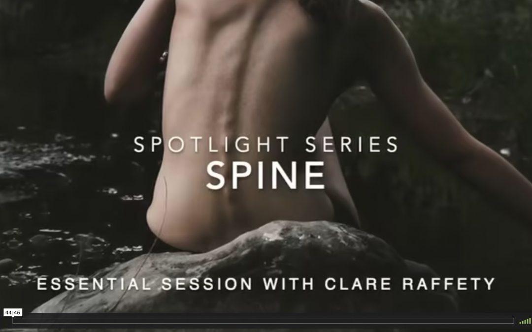 Spotlight Series: spine. Essential session