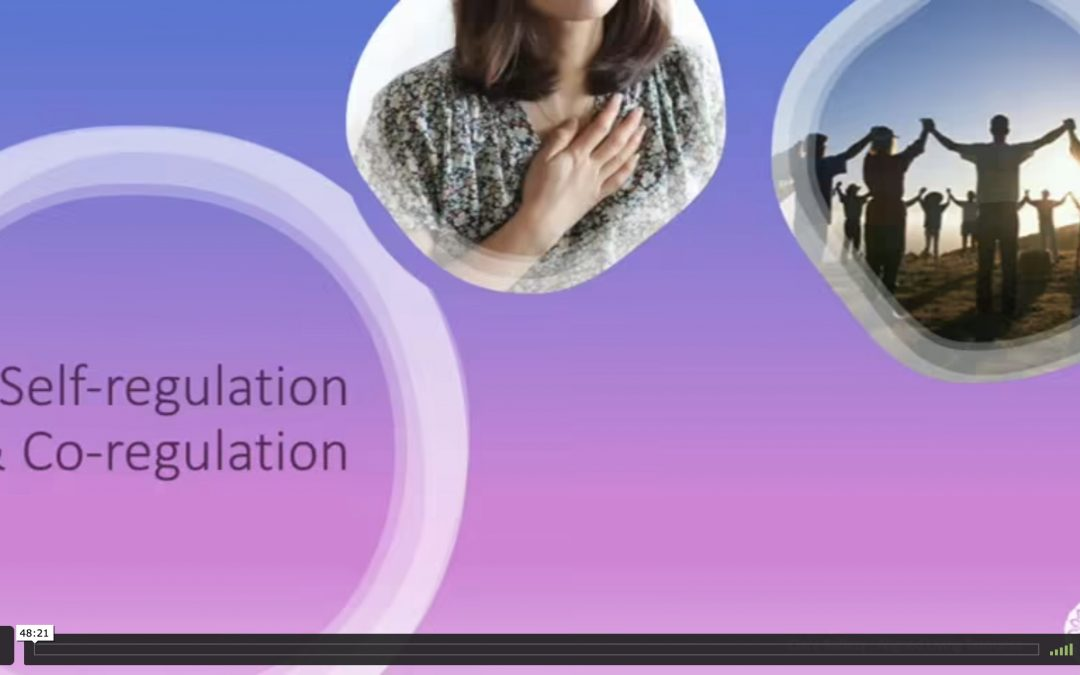 self-regulation & co-regulation: theory & practice