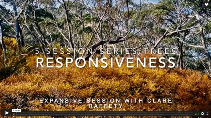 Series inspired by trees: Responsiveness