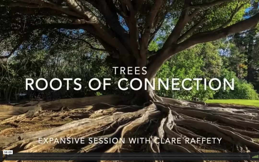 Series inspired by trees: Roots of connection. Expansive